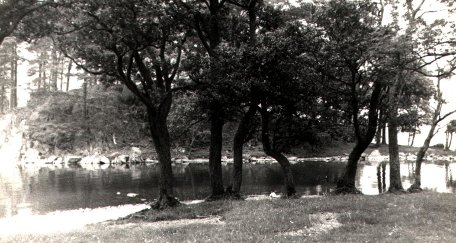 Old photograph of river bank memory